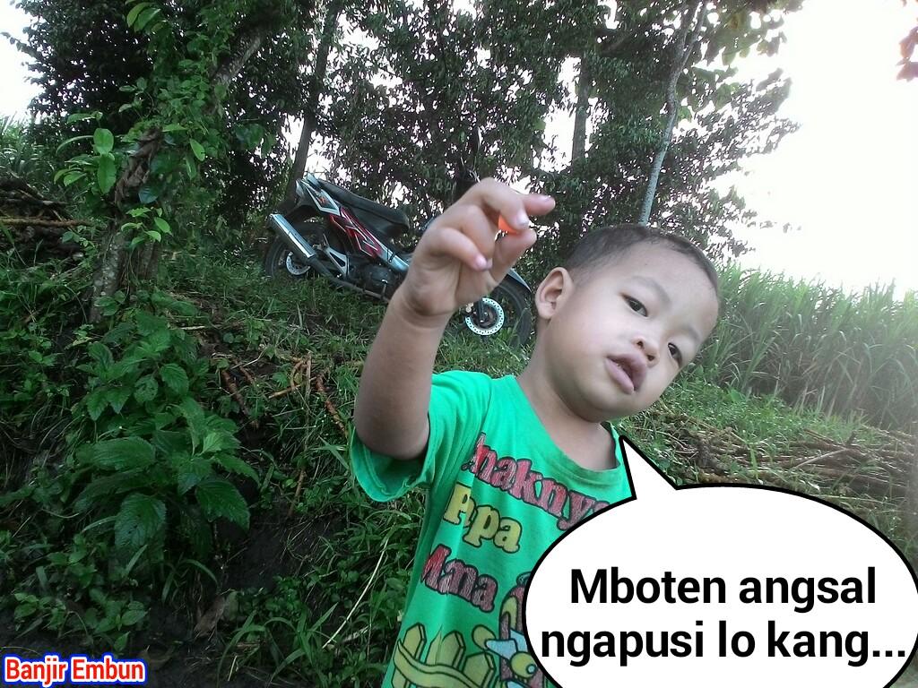 44 Meme Lucu Anak Kecil Keren Dan Terbaru