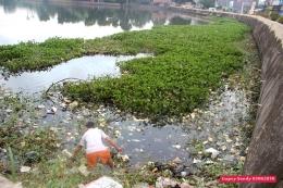 Eceng gondok dan sampah di Situ Tujuh Muara sebelum dilakukan Opsih. (Foto: Gapey Sandy)