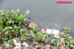 Sampah dan eceng gondok berserakan di Situ Tujuh Muara. (Foto: Gapey Sandy)