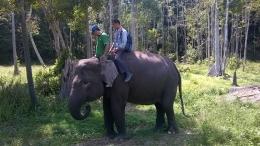 Ivo Duanti, gajah betina berusia 32 tahun, salah satu primadona di Arboretum (foto: istimewa)