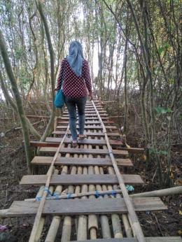jembatan bambu, akses jalan menyusuri hutan bakau/dokpri