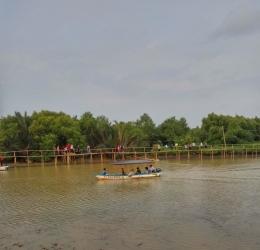 perahu wisata untuk menyusuri sepanjang hutan mangrove