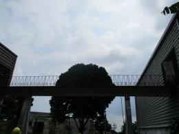 jembatan penghubung antara ruang destilasi dan ekstraksi