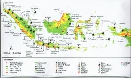Peta Sebaran Tambang di Indonesia (sumber : geoenviron.blogspot.com)