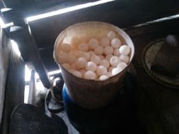 telur penyu yang dikumpulkan di Pulau Pandan Sumatera Barat