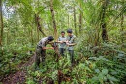 Kerusakan lahan budidaya, menghilangnya ruang terbuka, dan bahaya kepunahan yang terus bertambah mengenai banyak bentuk kehidupan satwa dan tumbuhan. Usaha konservasi lingkungan harus diimbangi dengan pembentukan kesadaran akan pelestarian lingkungan (Sumber: Inside Indonesia).