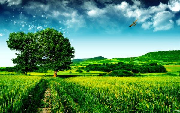 Ilustrasi gambar dari kaeshafiz.wordpress com