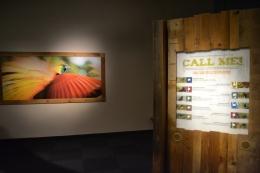 Tombol interaktif, membantu identifikasi spesies berdasarkan kicauannya (dokumentasi pribadi)