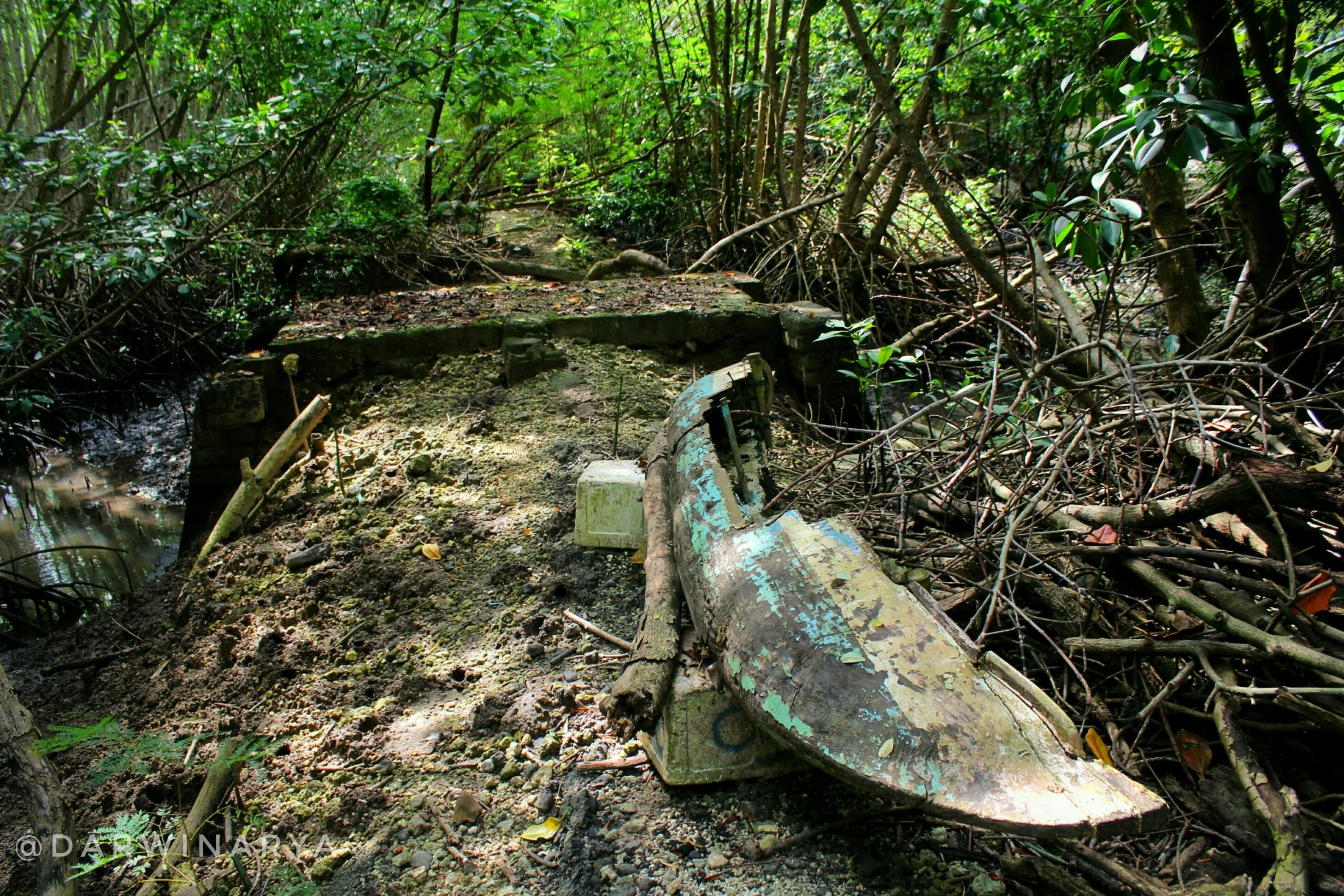 Sebuah Perahu Kano Rusak dan Dibiarkan Ditengah Hutan Mangrove Bali / dap