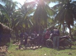 Peserta Pelatihan mengunjungi kebun kelapa di Desa Pulau Kumbang. Foto dok. Yayasan Palung