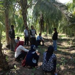 Pemateri menjelaskan tentang agroforestri di kebun kelapa. Foto dok. Yayasan Palung