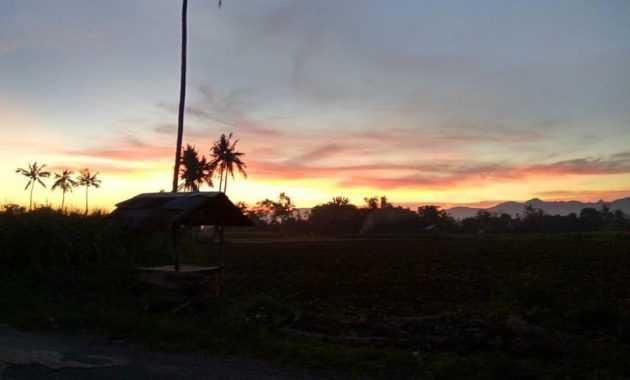 Panorama Madura, foto diambil di Jalan Ganding-Prenduan, Desa Ketawang Laok, Kecamatan Guluk-guluk, Kabupaten Sumenep, Madura. (dokpri)