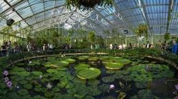 Royal Botanical Garden di London. Photo: ecorazzi.com