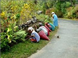Desa Mawlynnong, India ( Foto travel.dream.co.id )