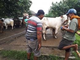 Bayar Tunai di pasar hewan (dok pribadi)