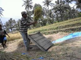 Seorang petani di Desa Suela, Lombok Timur sedang memisahkan beras gabah dengan alat tradisional (greja), Rabu (07/03/2018) pagi.