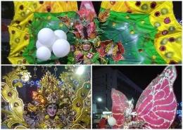 Searah jarum jam, Butterfly kuning cerah, Butterfly pink dan Asem Arang emas. Dokpri