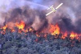 Ilustrasi kebakaran hutan dan lahan. Foto dok. Kompas Regional