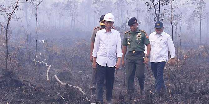 Jokowi saat tinjau langsung ke lokasi karhutla (Foto: merdeka.com)