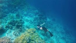 Pulau Togean. Source: instagram/@thewildweekendr