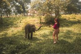 Menyapa bayi gajah (dok. Pribadi)