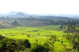 Panorama persawahan di Batunabolon, Parsoburan (Foto: sisyeline.wordpress.com)
