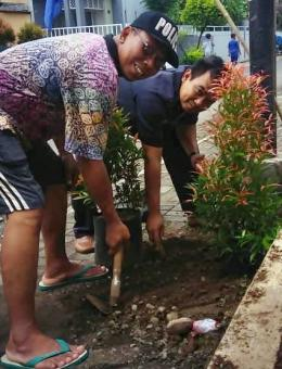 Bapak RT menanam pohon di sekitar kompleks gereja st Yosep Purwokerto (dok pribadi)