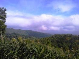 Di paling depan sana Bukit Watu Sodong destinasi wisata alam desa Glempang Mandiraja Banjarnegara