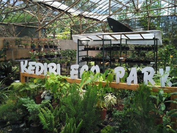 Beragam tanaman hias yang dijual sebagai buah tangan Kediri Eco Park (foto: Luana Yunaneva)