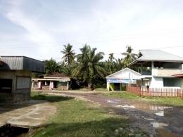 Rumah Penduduk dengan latar belakang kebun Sawit. Dokumen pribadi.