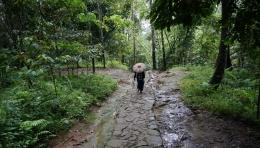 Berjalan di rimbunan hutan kampung baduy