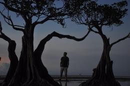 Mangrove Mini, ikonnya Pantai Walakiri (dokpri)