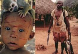 Salah satu cara penularan: kontak langsung dengan hewan yang terinfeksi virus monkeypox(Sumber: Kemenkes RI, 2019)