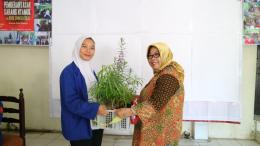Rencana tindak lanjut penanaman tanaman anti nyamuk oleh Mahasiswa Profesi Ners Universitas MH Thamrin Jakarta kepada Kader Jumantik RW.01 Susukan