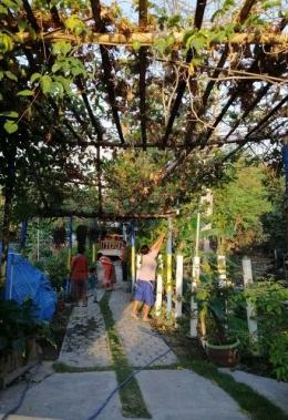 Pupuk cair hasil olah sampah organik untuk pupuk di Taman Edukasi foto :Dokpri
