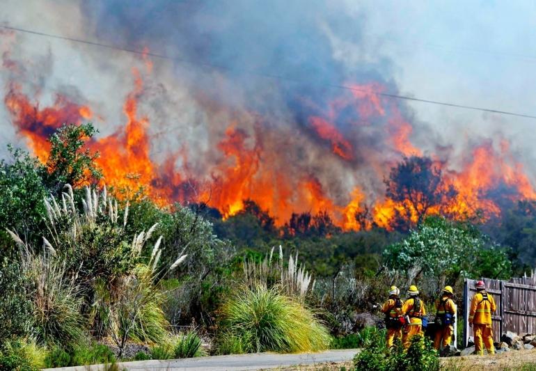 Kebakaran hutan yang begitu menyayat hati rakyat Indonesia. (www.aksipost.com)