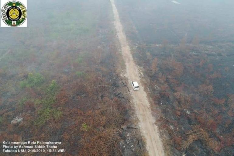 Lahan gambut terbakar di Kalampangan Kota Palangkaraya Kalteng (dok. USU 21 Sept 2019)