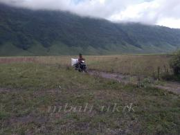 Pencari rumput dari Ngadisari, Probolinggo. Dokumen pribadi