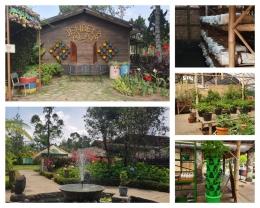 Selain hewan peliharaan, banyak tanaman di Jendela Alam. Beberapa greenhouse, hidroponik, toko sayuran bisa kita temukan. (Foto : Dok. Pribadi)