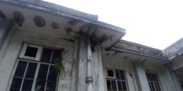 Sisi Bangunan yang masih kokoh walau sudah ada lumut dan air (Dokpri November 2019)
