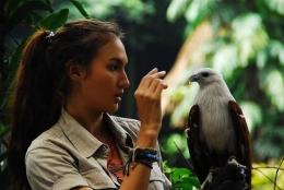 www.indonesiafilmcenter.com