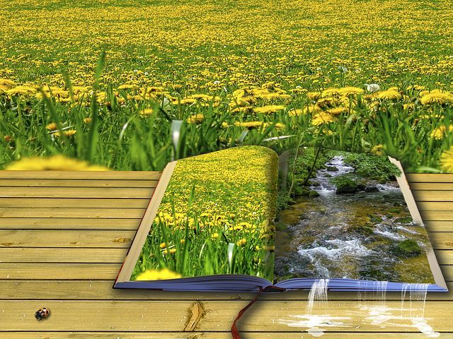 Ilustrasi. Sumber:Pixabay.com