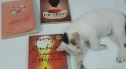 Ia tertidur setelah lelah menggangguku rapi-rapi buku koleksi (dokpri)
