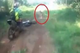 Orang yang diduga anggota Suku Mante tertangkap kamera beberapa tahun lalu. DOK Youtube dipublikasikan kompas.com