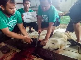 Gambar 3 ~ Pemotongan hewan qurban   Dok. pribadi