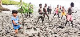 Semangat Generasi Muda Saat Menanam Pohon Mangrove di Pesisir Kampug Yepem Distrik Agats,Kabupaten Asmat Provinsi Papua (Foto: Ist.)