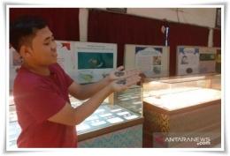 Staf Museum Uang Sumatera di Medan memperlihatkan koin kuno masa kerajaan (Foto: Antara)
