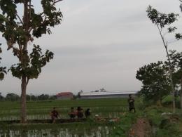 Anak-anak sedang bermain layangan di sawah | dokpri