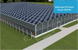 Agrivoltaic dengan konsep rumah kaca (okorder.com)