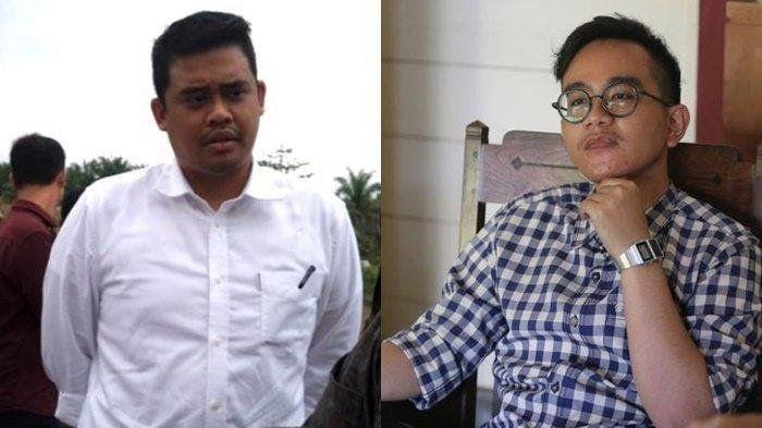 Bobby Nasution dan Gibran Rakabuming Raka (wartakota.tribunnews.com)